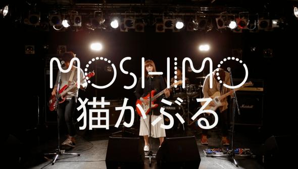 Comp:MOSHIMO - 猫かぶる